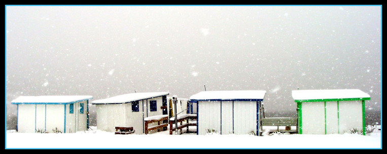 Winter Cabanas