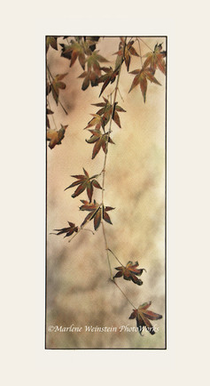 Autumn Interlude (SOLD)
