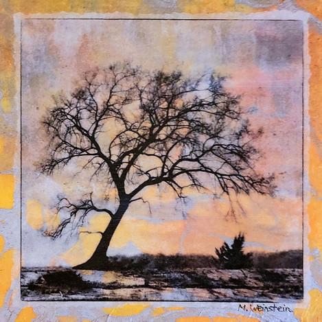 Fiery Tree (SOLD)