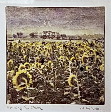 Evening Sunflowers (SOLD)