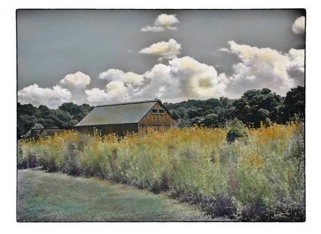Avalon Barn (SOLD)