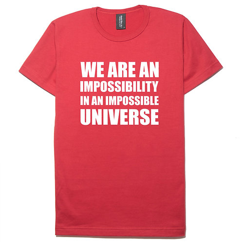 We are an impossibility