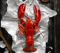 The Boiler_Lobster1.jpg