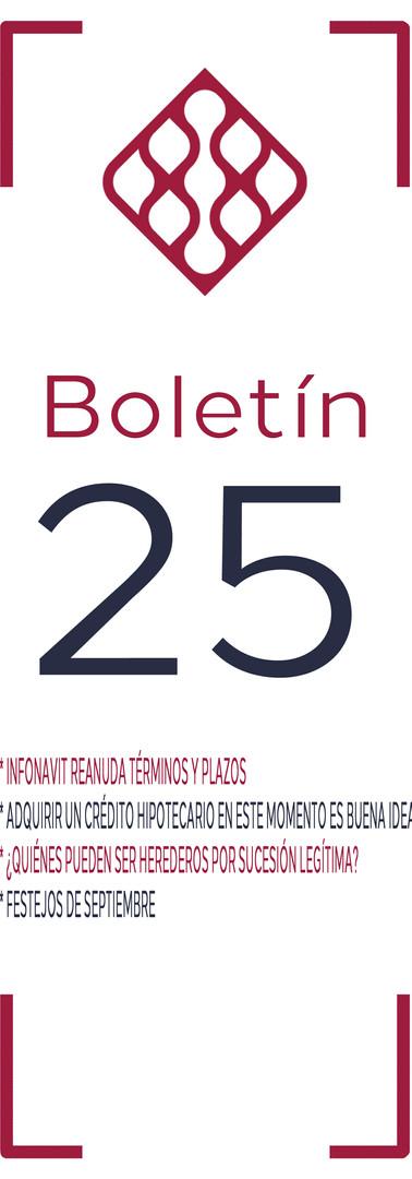 Boletín 25.jpg