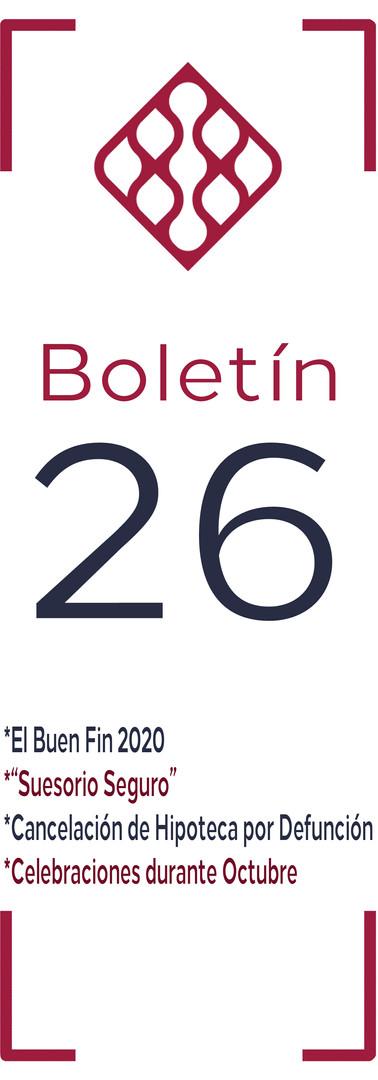 Boletín 26.JPG