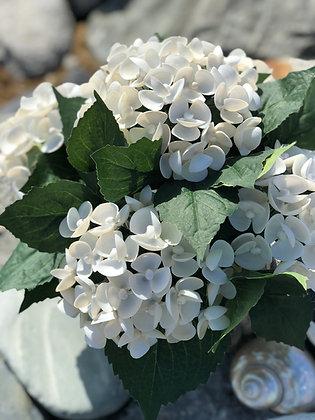 Seashell Hydrangea Arrangement