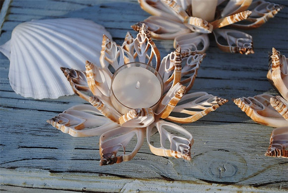 Cut Shell Candle Holder