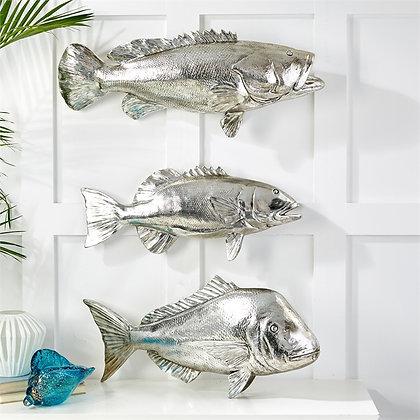 Big Catch Coastal Silver Fish