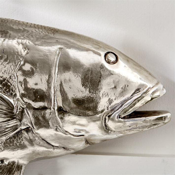 Big Catch Coastal Silver Fish | sib-home