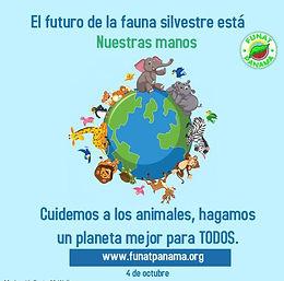 ¡Cuidemos la fauna silvestre!