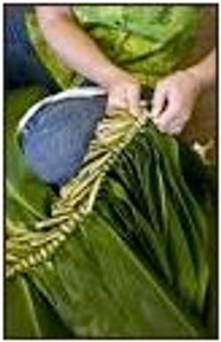 organikbe plant 7.jpg