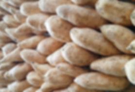 Cilembu Sweet Potato Seed Origin