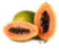 Tropical Frut Papaya Seed Origin Indonsia
