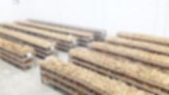 seed origin sweet potato curing storage warehose