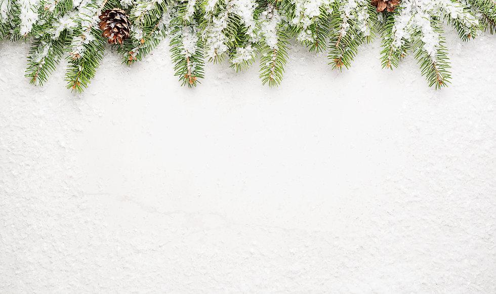 Christmas White Background.jpg