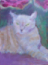 Custom Pet Portraits by artist Andrea Goldsmith Chico the Cat