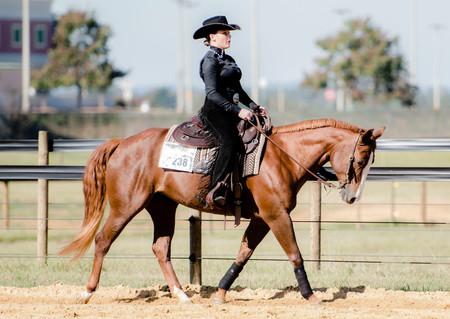 Auburn Ihsa Equestrian Team