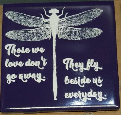 Fly Beside Us