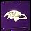 Thumbnail: Ravens Magnet