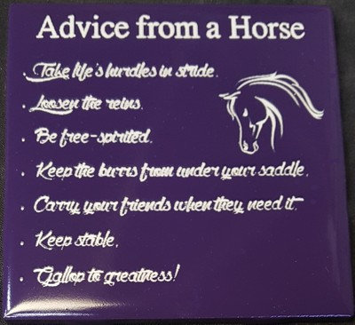 Advice From a Horse