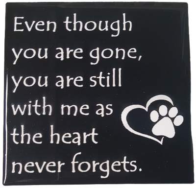Heart Never Forgets