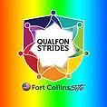 Qualfon Logo.jpg
