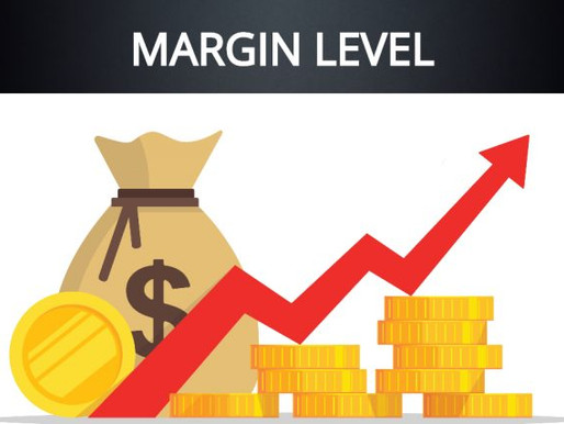 29 – All About Margin Level in a Margin Account