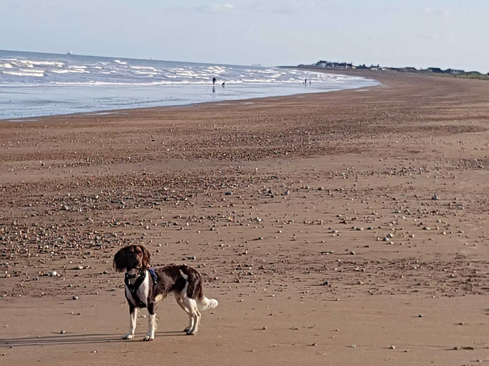 Sandwich Bay is a vast stretch of sand between Ramsgate and Deal in East Kent