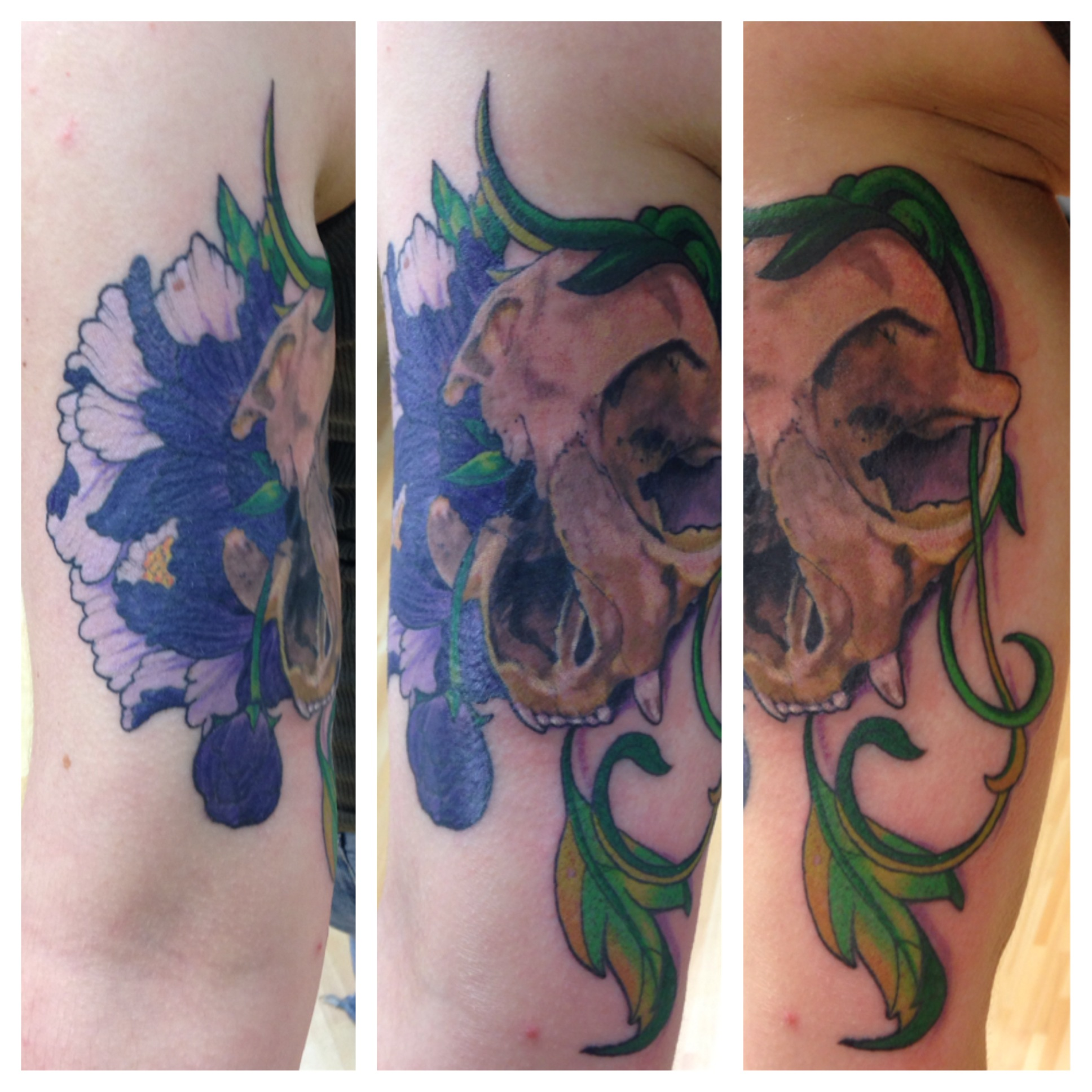Peony and Cat Skull