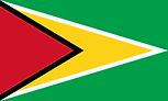 圭亞那(法國海外省區) 國旗 French Guiana.png