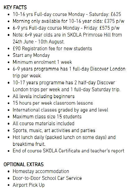 SKOLA summer programme .jpg