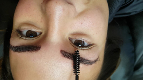 Alicia Brow Feathering