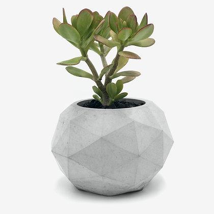 מטאורית גאומטריתמדויקת, גדולה ומרשימה, עציץ בטון נופרמפארת את מראה הצמחים בתוכה ונותנת מראה עכשווי ונכון. נעשה בעבודת יד מ