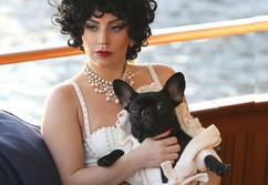 celebrity-dogs-lady-gaga.jpg
