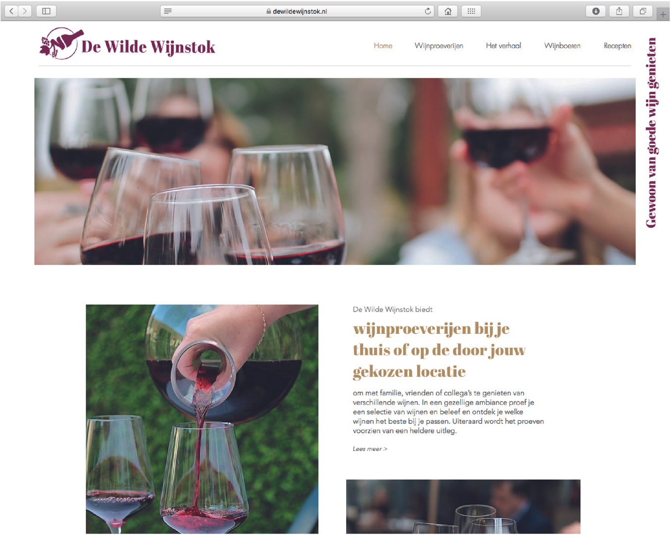 Webdesign - De Wilde Wijnstok