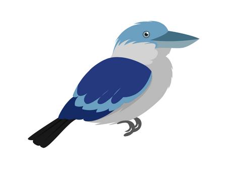 Australian Animals - Kookaburra