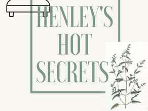 Coming Soon... Henley's Hot Secrets...