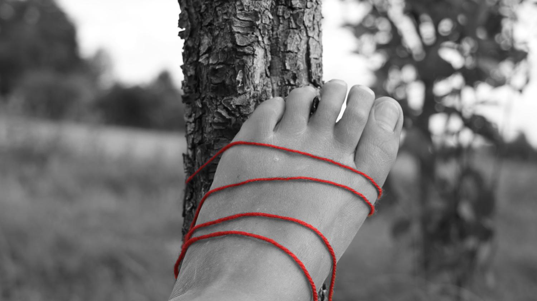 bond to nature
