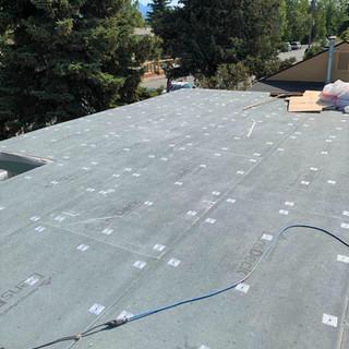 Roof Rehab - Progress