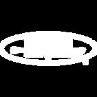 Harpoon White Logo 2.png