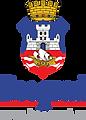 logo_lat.png