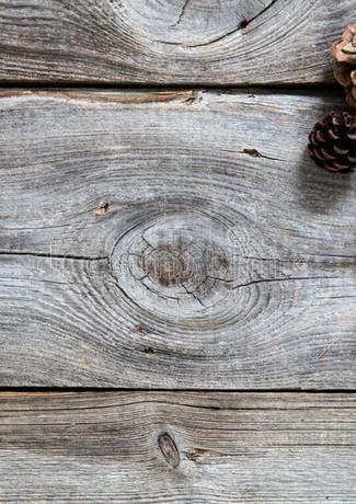 genuine-wood-fir-cones-natural-winter-ho