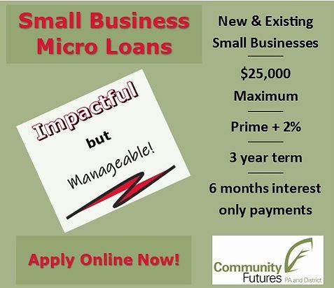 Micro Loan Web Image.jpg