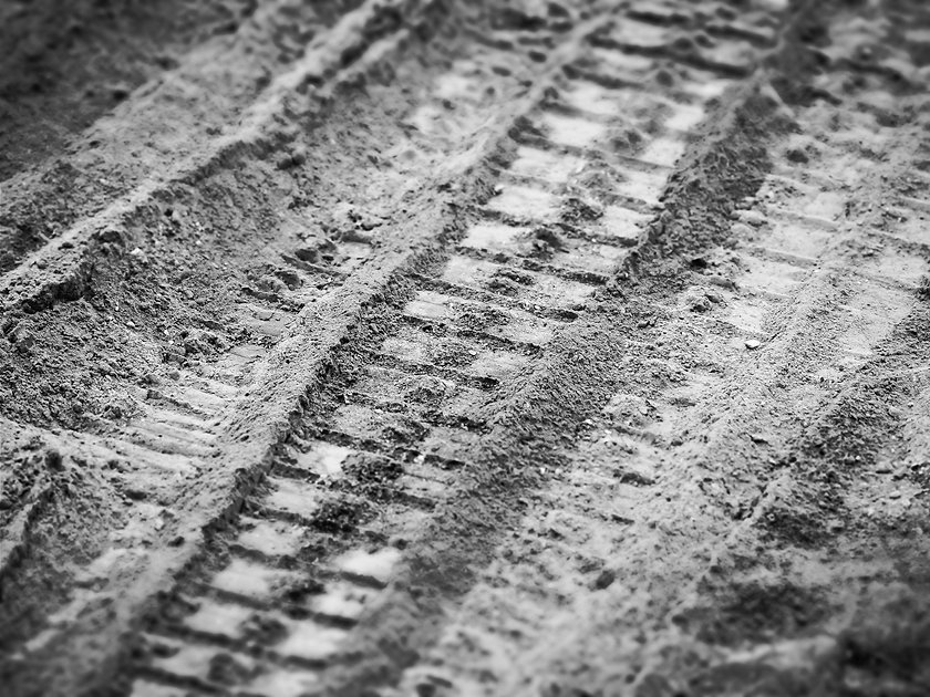 sand-wood-track-sunlight-texture-leaf-82