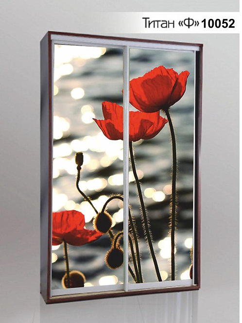 Шкаф-купе с фотопечатью Титан Ф2 Цветы