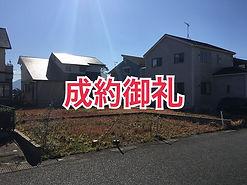 IMG_2257[1].JPG