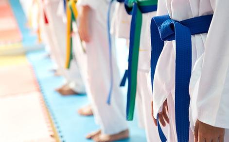 Cinture Judo