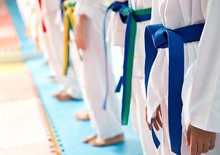 Judo Belts