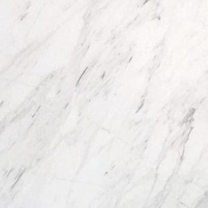 APOLO WHITE