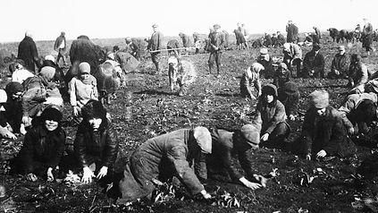 ukrainian-famine-gettyimages-170981325-f